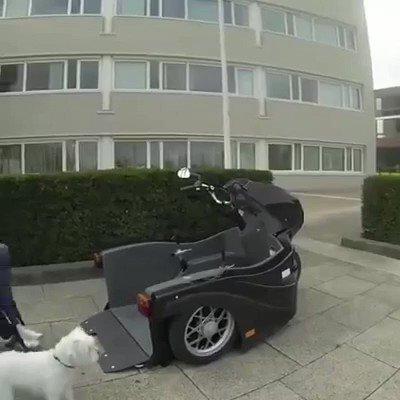 車椅子と犬がそのまま乗れるバイク✨移動範囲が広がるね😆