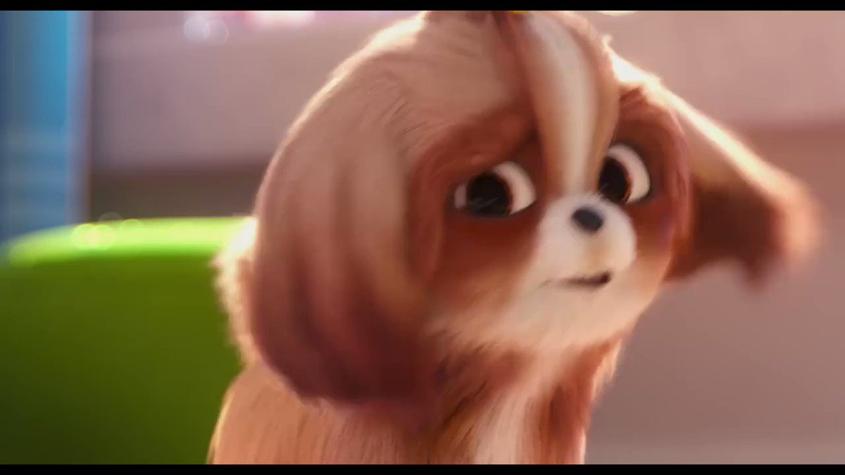 """We regularly present the best and latest Hollywood blockbusters as the original version (OV). Every week Wednesday.  This week """"The Secret Life of Pets 2"""" (03.07.19)  Tickets: http://bit.ly/2ZT4xaN  #KinoIlmenau #OriginalVersion"""