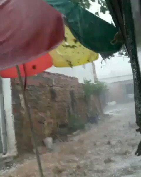 Ingesloten video