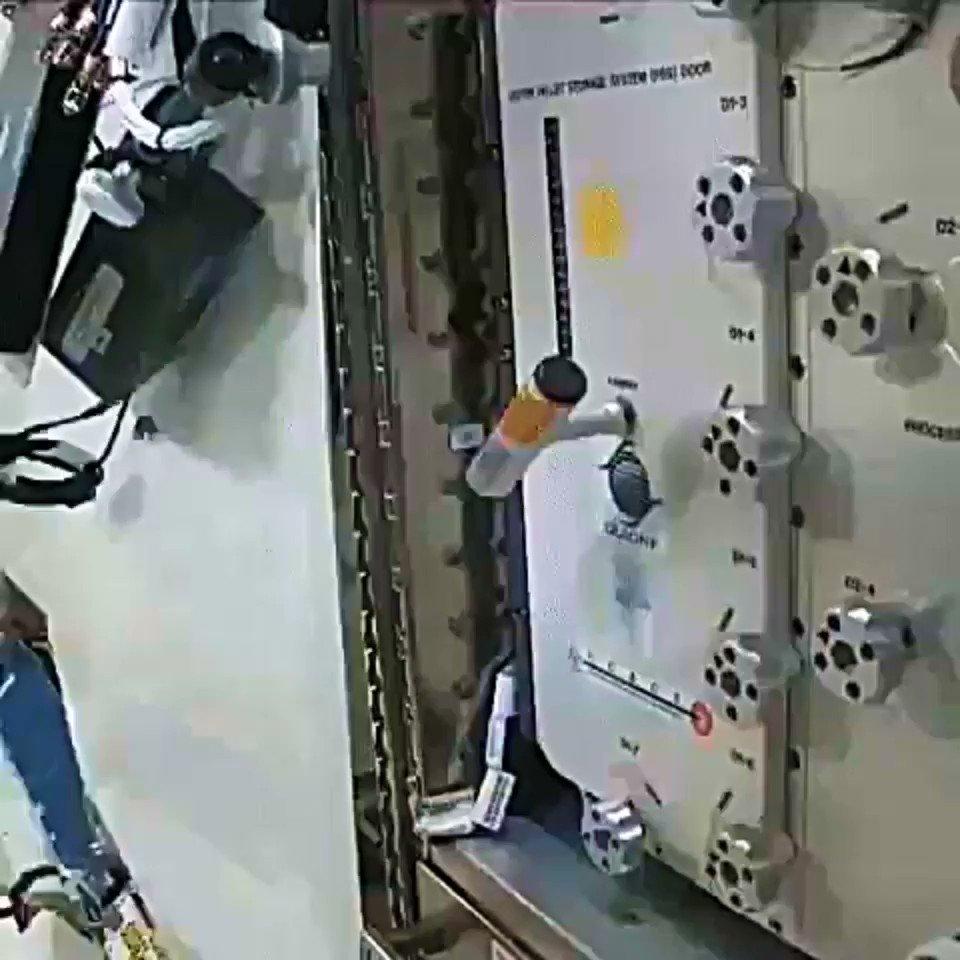 1985年に宇宙飛行士が気付いた奇妙な現象、ジャニベコフ効果