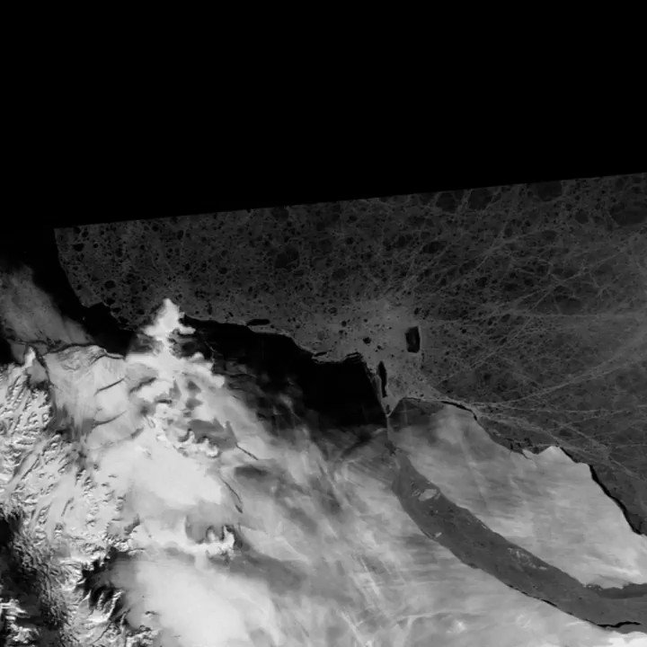 Happy birthday A68! The world's biggest iceberg broke away from the Larsen C ice Shelf in July 2017. Initially, it didn't move very far, very fast. But it's been quite nimble of late. This #Sentinel1 movie shows the progress since Jan 2018. https://www.bbc.co.uk/news/science-environment-48920168… @adrian_luckman