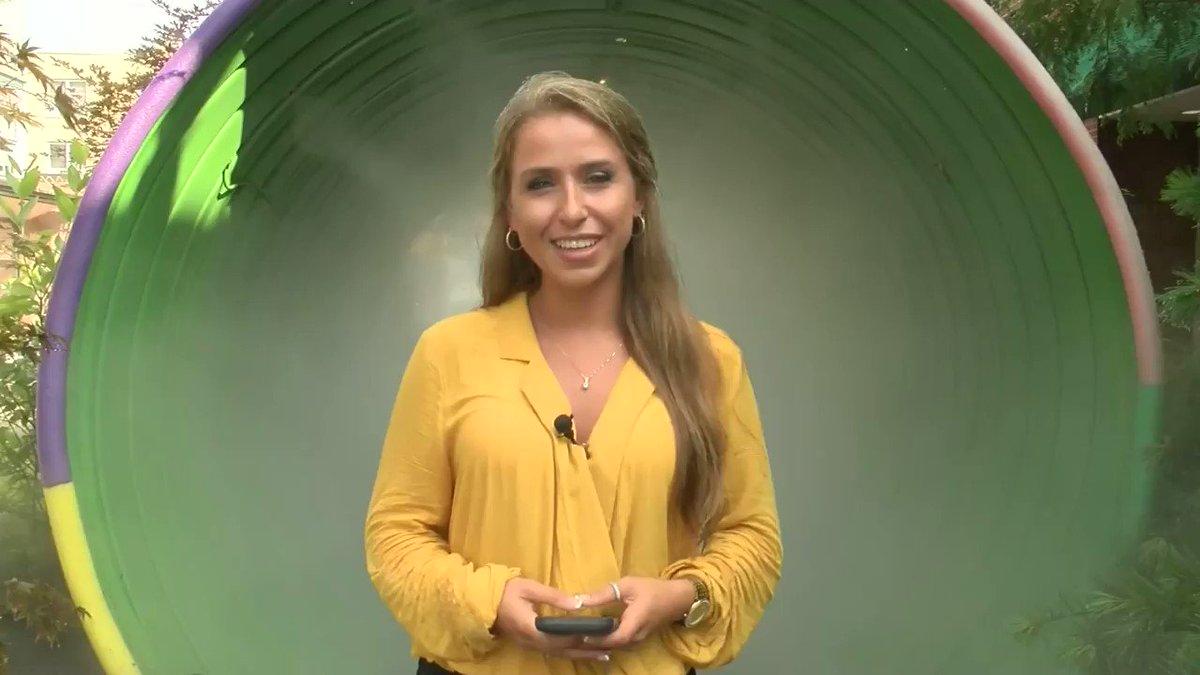 Samantha York - @SamYorkReports Twitter Profile and