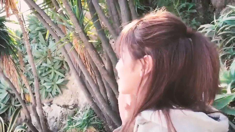 わっ‼︎海が見えてきた。#潜在意識#かなりエモい#欅坂46#妄想デート#彼女感#公園デートなう#パーカー女子