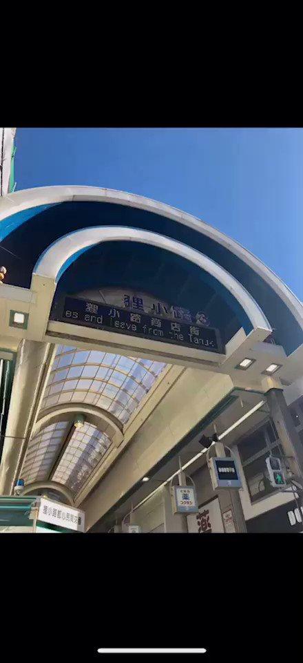 CHOJUGIGAへの行き方🧚🏻♀️ 観光案内所を左手に狸小路1丁目に向かって真っ直ぐ進みます✨ 飲食店やドラッグストア、ペットショップ等を横目に直進していくと正面に北海道の美味しい海鮮店が並ぶ二条広場が見えてきます🐟 角のガッチャさんを左に曲がればCHOJUGIGA到着!! 狸小路3丁目から約4分👣 #札幌古着