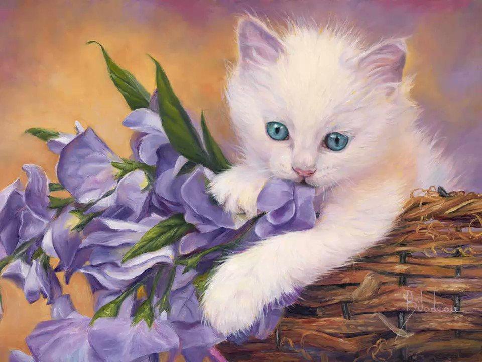 Открытки кошки белые, контакте
