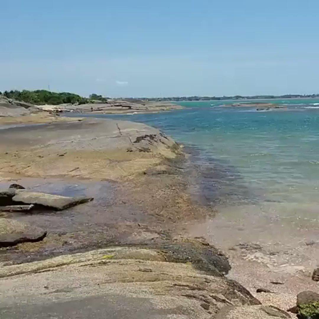 Super dica do @terracapixaba Já conhece a Praia das Conchas em Guarapari? Se liga então nesse vídeo da @melissa_ost_teixeira e veja como ela é paradisíaca!  Ela usou a #terracapixaba e hoje é o destaque do dia na nossa galeria!  Quer ver sua foto ou vídeo aqui nas Quartas pic.twitter.com/qytsVglT9m