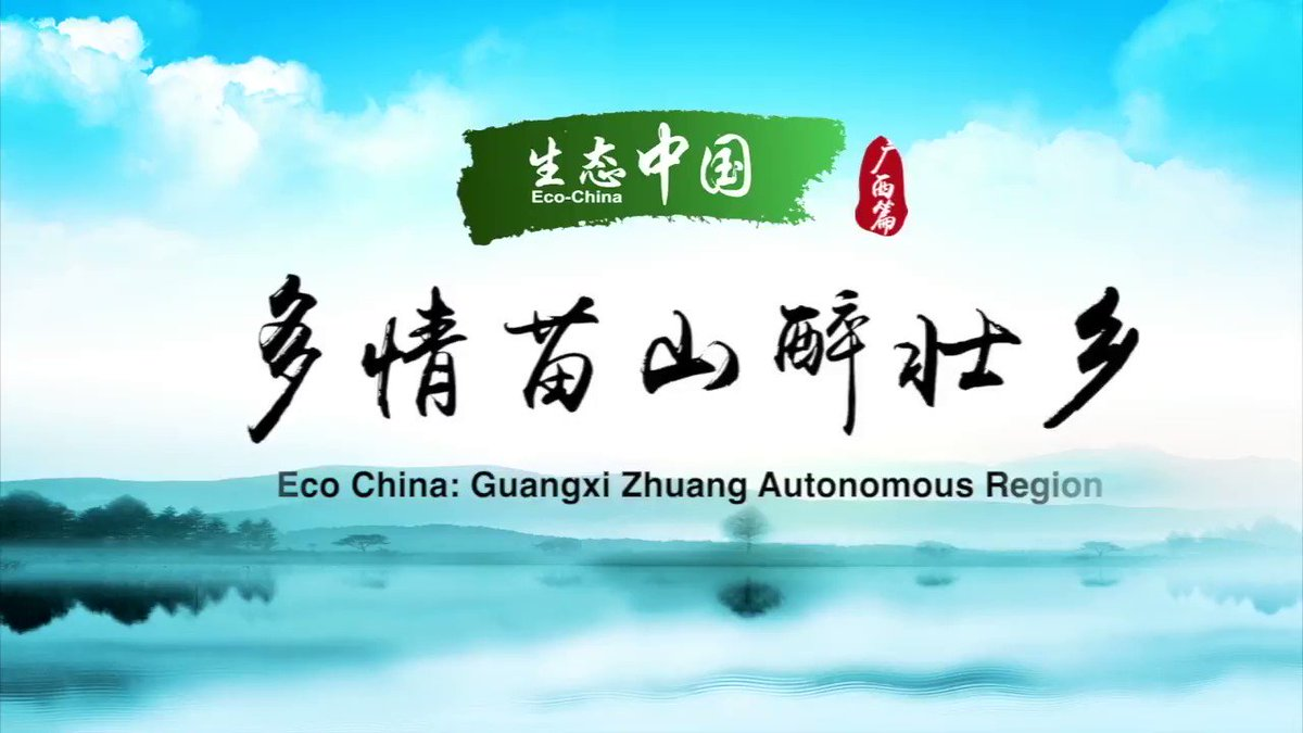Guangxi Zhuang Autonomous Region has taken various measures in recent years to improve rural environment including expanding forest coverage and improving infrastructure construction #EcoChina #FlyOverChina