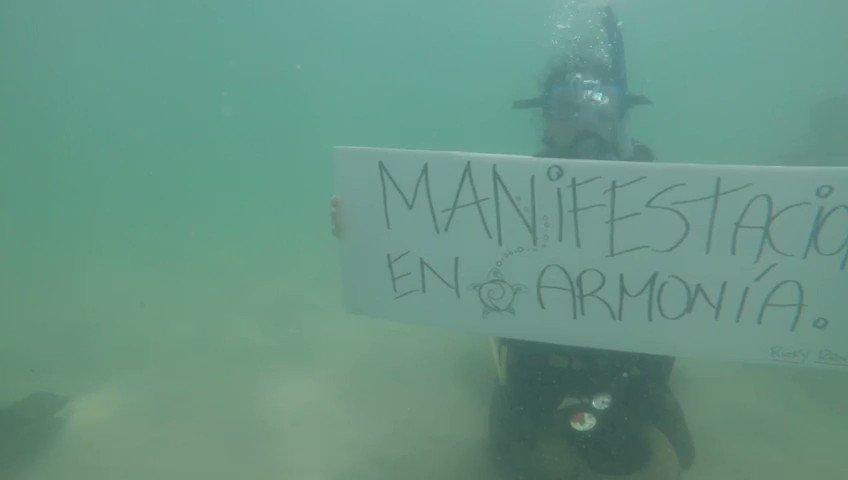 Scuba divers, near Escambrón Beach, Puerto Rico, did a minute of silence, under the sea, today. They had a message for Governor @ricardorossello