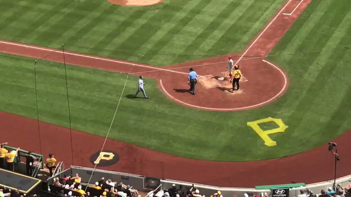 Fan stops play at PNC Park by trying to shake player's hand in batter's box