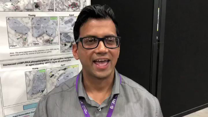 Notes from #AAIC19: Meet @alzassociation funded researcher, Dibs Datta, PhD from @Yale. Hear how he's working to find answers. #ENDALZ
