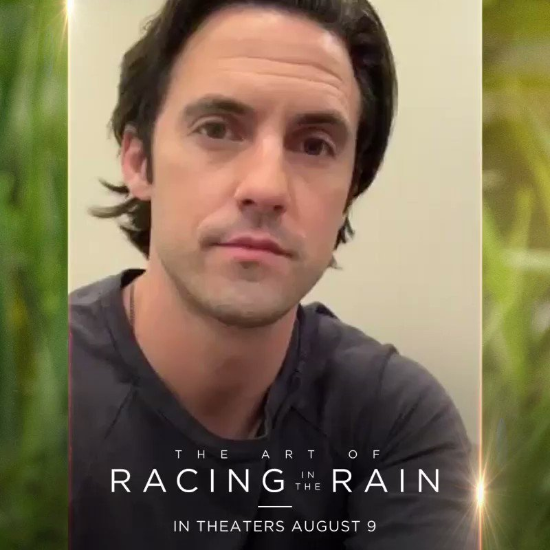 Tickets on sale now for #TheArtofRacingintheRain  in theaters August 9. MV #ArtOfRacing   http://artofracingmovietickets.com/