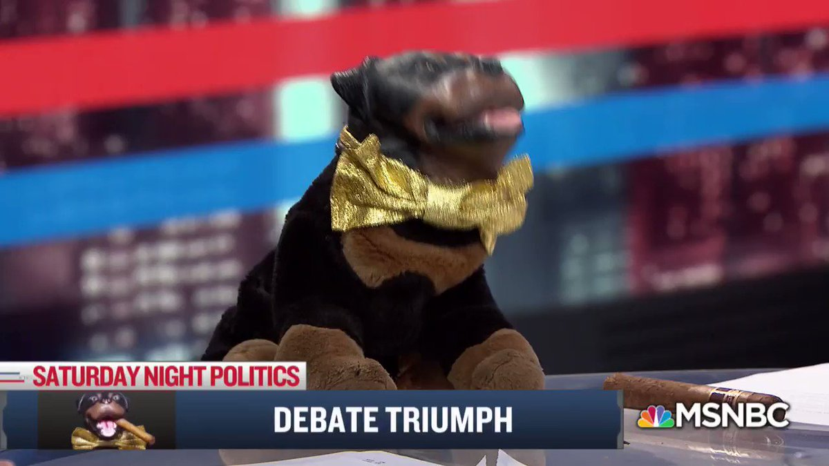 All the top political minds stopped by @SNPonMSNBC on Saturday, including @TriumphICDHQ 🐶 https://t.co/xb0GH8QARH