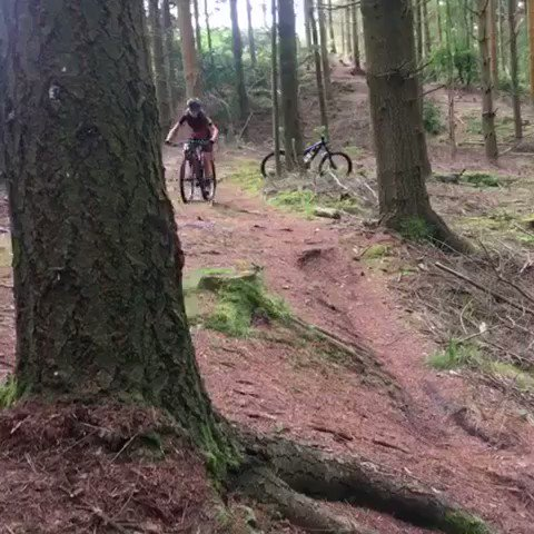 Fun afternoon riding roots in the woods!#roots #mtb #fullsuss #edict#TORQFuelled#Unbonkable@TORQfitness @FeltBicycles @SRSuntour @ScimitarSports @SchwalbeUK @fabriccycling @FibraxLtd @FenwicksBike @use_exposure @NoTubes @NWcycling