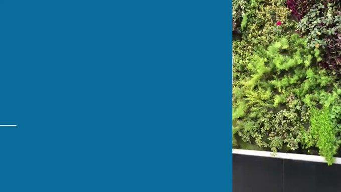 💡¿Sabías que la fachada de nuestra sede de Parque Patricios es un muro verde?♻️...