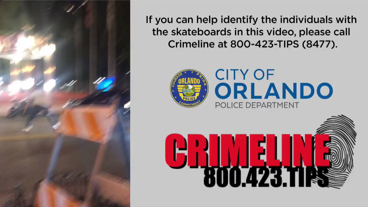 CrimelineFL photo