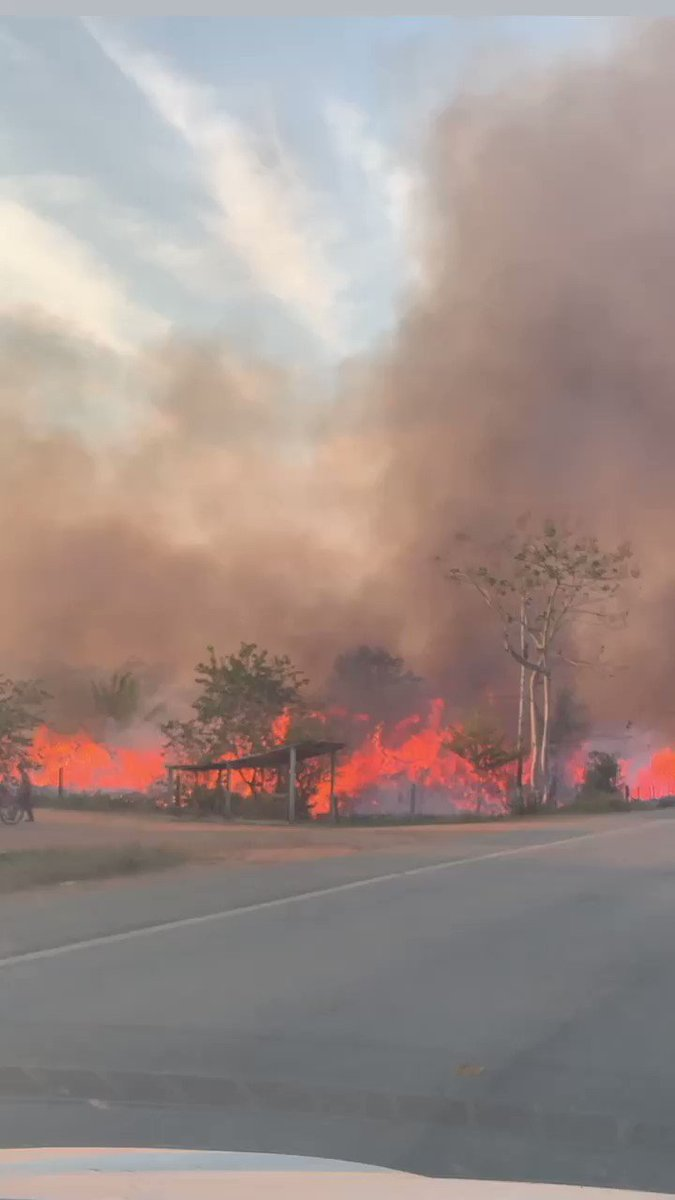a reminder that the amazon forest has been on fire for 3 weeks now and because of the lack of media coverage people don't know about it. this is one of most important ecosystems on earth