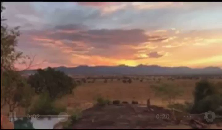 Good evening from ,Kidepo sunset ! all can happen on your #ultimatewildsafaris  5 days #safaritour to #Kidepovalleynationalpark for #wildlifeviewing & #culturetour 👉🏿https://lnkd.in/emSi8gq#Africa #Kideponationalparksunset #kedeponationalparksunset #LoverOutNow #GossyIsClean