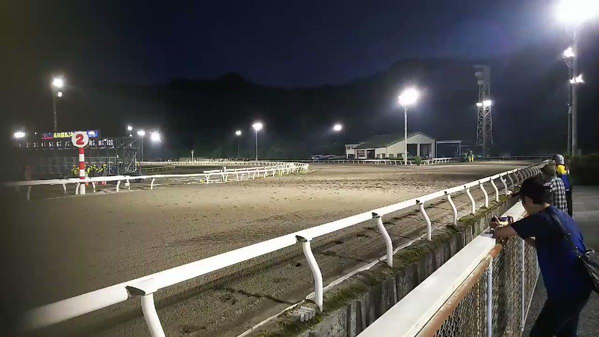 高知競馬🐴 #高知競馬 #夜さ恋ナイター