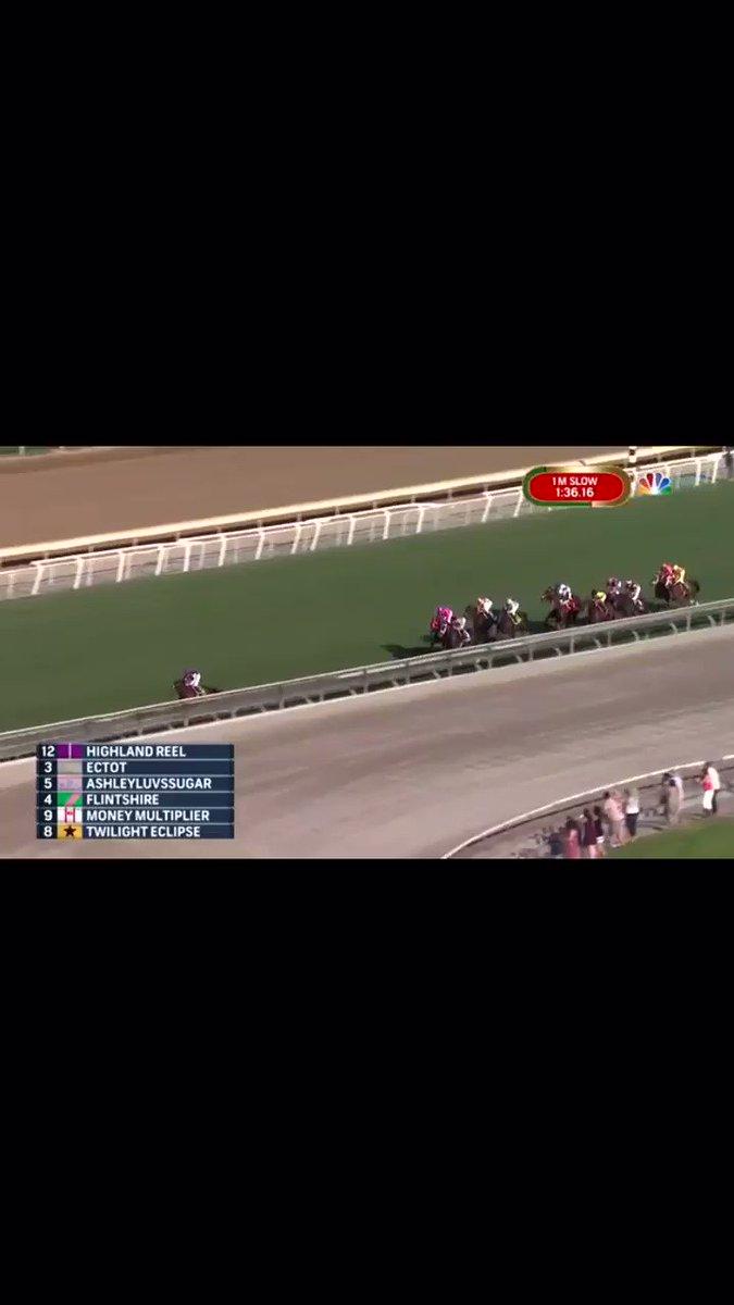 ウィンクスに負けたハイランドリールさん の後ろに フリントシャー 凱旋門賞馬ファウンド様……