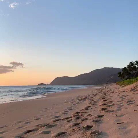 Image for the Tweet beginning: Kū ha'aheo e ku'u Hawai'i Stand