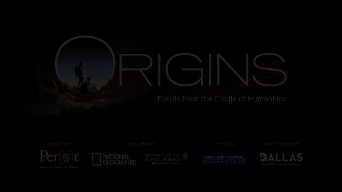 Bring your questions & journey with us to discover more during this exclusive exhibition! Origins: Fossils from the Cradle of Humankind. Coming October 19, 2019. Advance Tickets available: Members 8.29, Public 9.5 -in partnership @WitsUniversity @NatGeo #PerotMuseum #DigDeeper