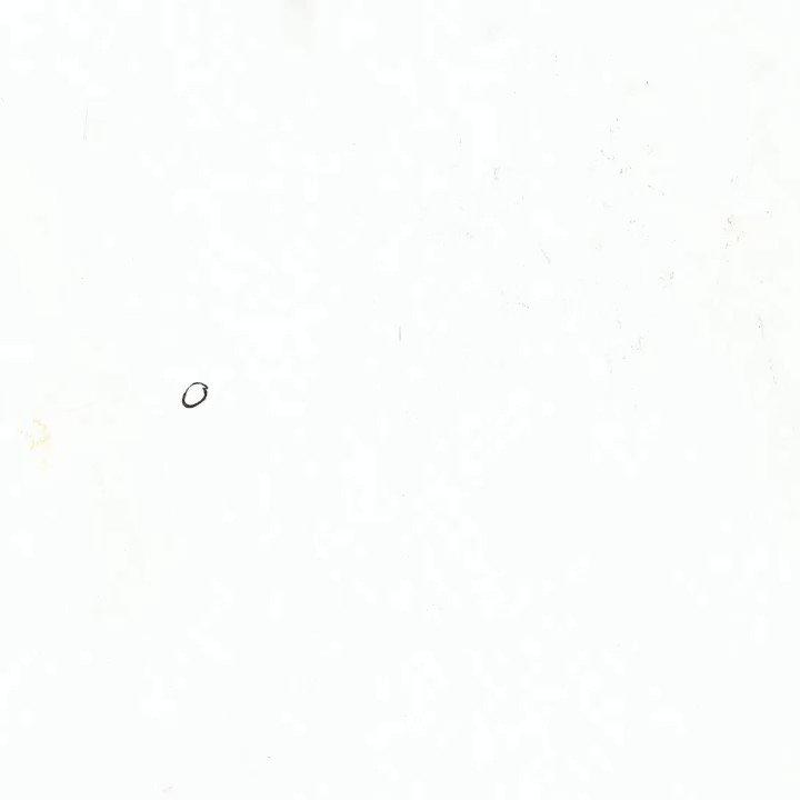 ヨルシカ 2nd Full Album「エルマ」8月28日発売。収録曲「夕凪、某、花惑い」発売まであと8日。