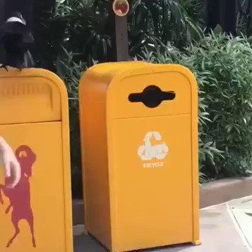 ペットボトルをリサイクルするカラス