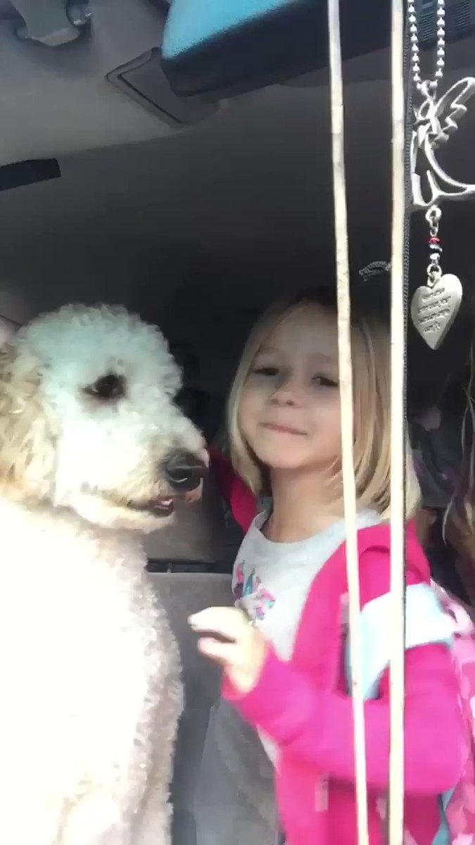 ❤️ My puppy insists going with the girls as they get dropped off at school...and he's so sad when they leave ❤️ #dog #DogLife #DogLover