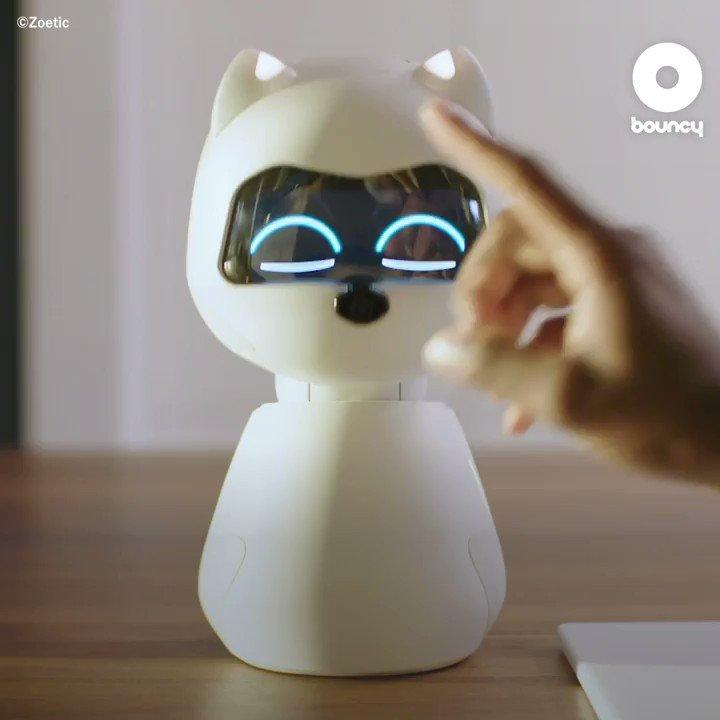 ペットが飼えない環境ならデジタルペットで癒されよう🐩 by Zoetic価格や入手方法はこちら👉#ペット #家族 #犬好き #柴犬