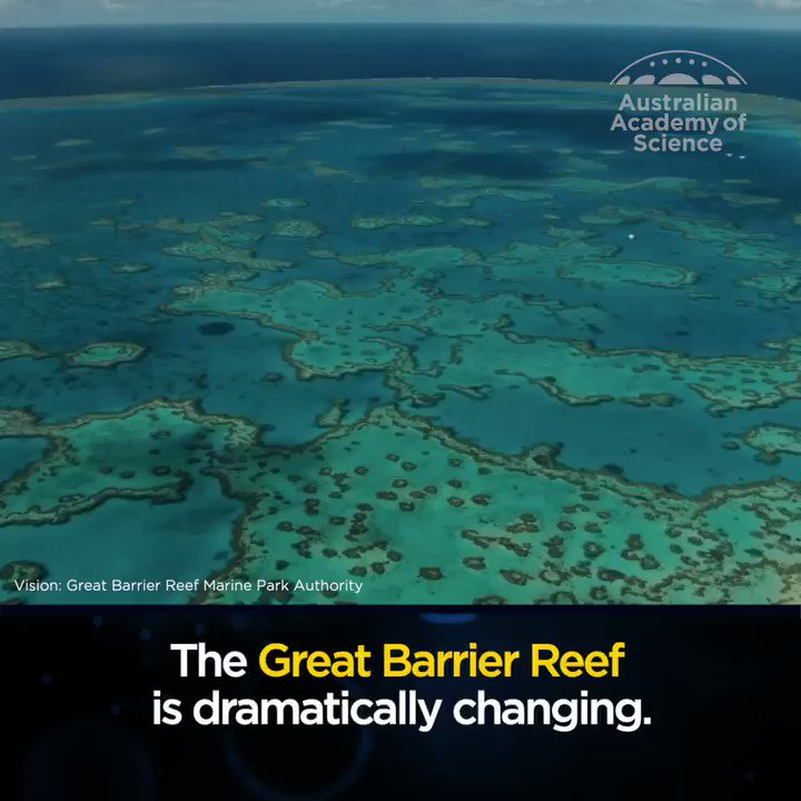 Outlook For The Great Barrier Reef Is Now 'Very Poor,' Australian Government Says