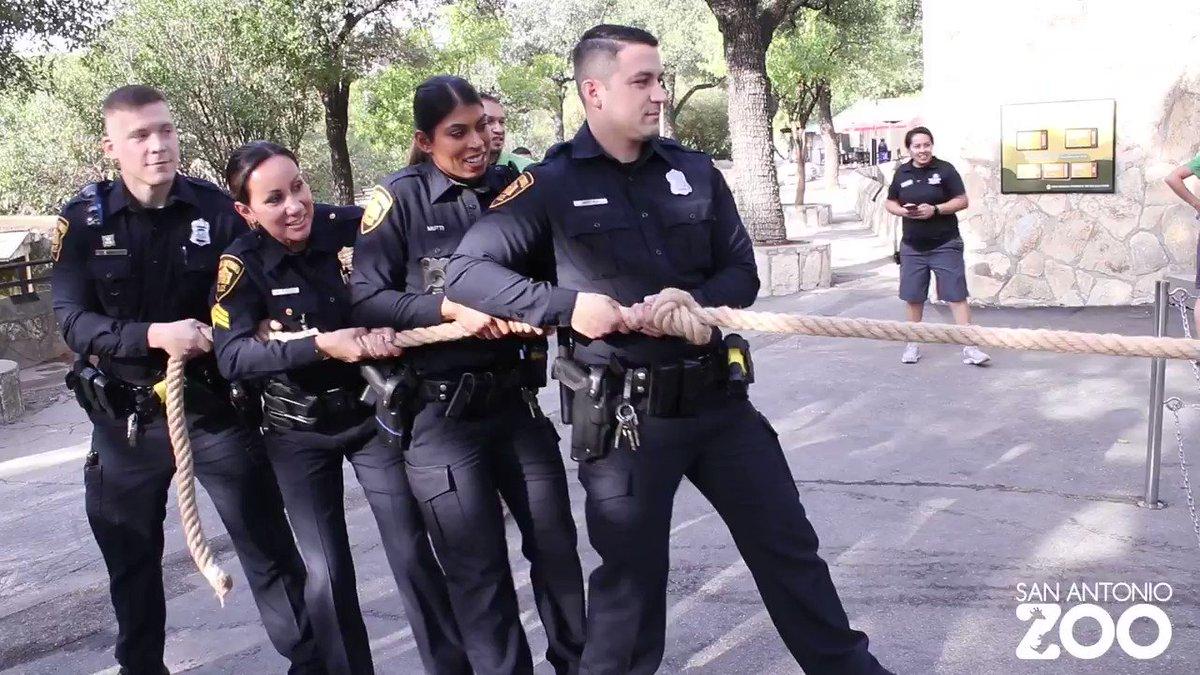 San Antonio PD (@SATXPolice) | Twitter
