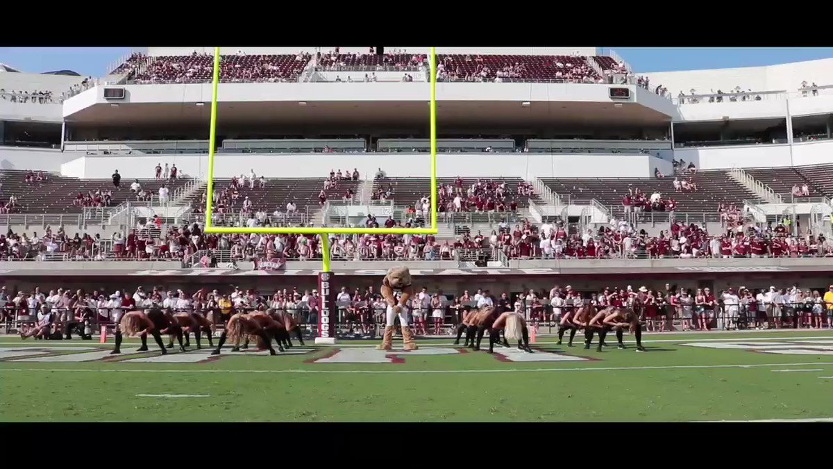 Rewatch our performance with @HailStateMascot from today's game! Got the 🐴 in the back! #HailState