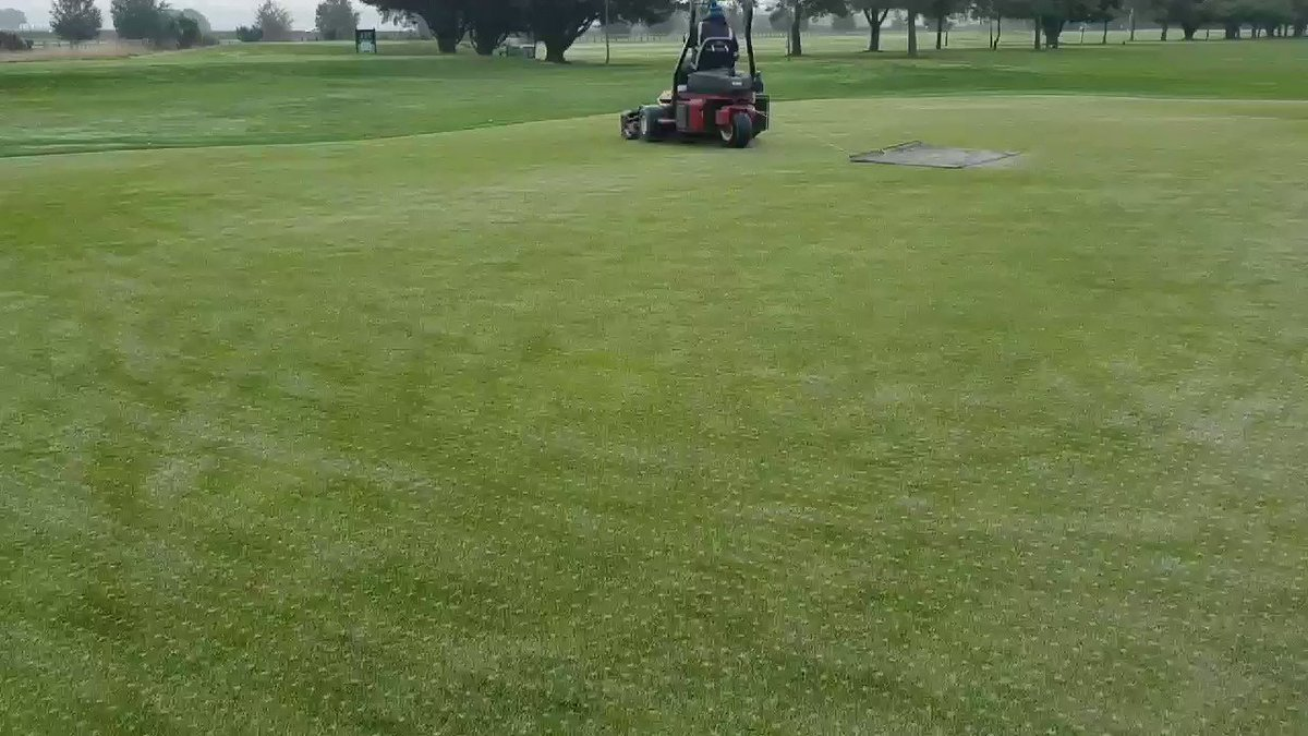 Image for the Tweet beginning: Topdressing working in extremely well.