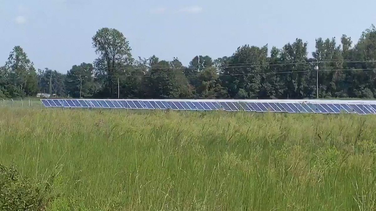 Seriously, solar energy is a big deal in North Carolina.I just passed a field of them.Dan McCready is in the industry, this is what we need.#McCreadyforNC #NC09 #DemCast #DemCastNC