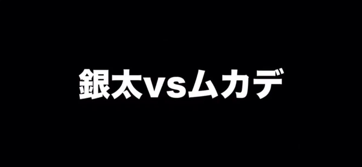 【銀太VSムカデ】
