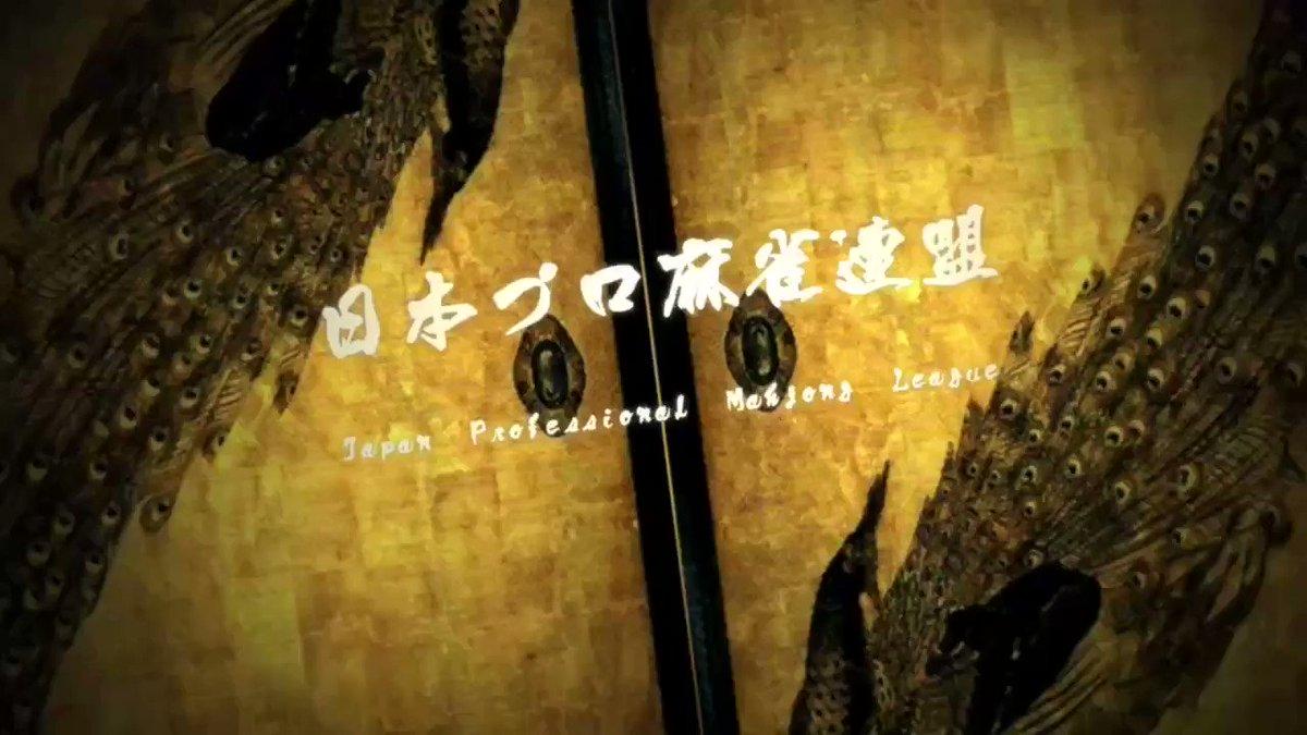 【第36期十段位決定戦インタビュー⑤】9/14(土)14:00から第36期十段位決定戦が始まります。決定戦前日、内川幸太郎プロです。