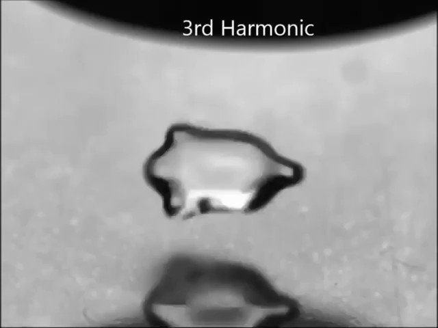 Harmonic oscillation in a levitated water drop
