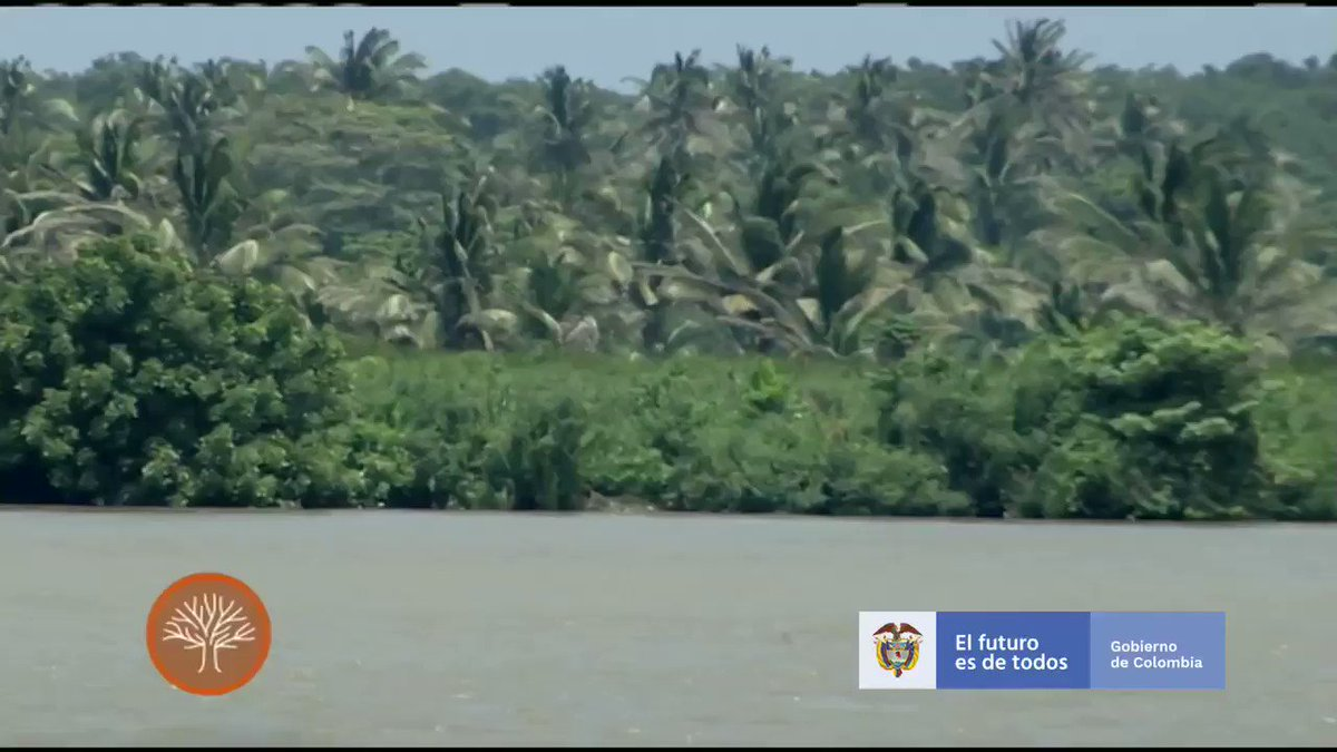 En Asamblea de @el_BID, que se realizará el año entrante, vamos a lanzar el concepto de Biodiverciudades y, también, inauguraremos esa protección ciudadana al Parque Nacional Isla Salamanca y que #Barranquilla sea una biodiverciudad del Caribe colombiano. #BarranquillaConstruye
