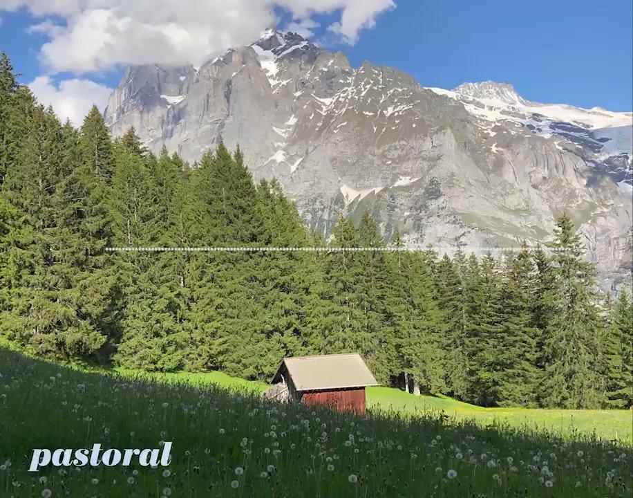 pastoral (harp/horns/banjo 🎵❤️)