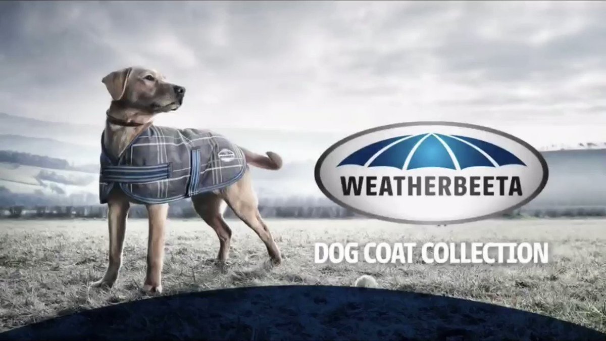 Warm, Super Strong, and Waterproof... not to mention available in some stylish colours! The Weatherbeeta Dog Coat Collection, perfect for the unpredictable weather #frenchiestagram #doglovers #cuteanimal #daily_frenchie #memostatigram #animals #ig_pet #petnpony #durhampic.twitter.com/lsCRNvZk1Q
