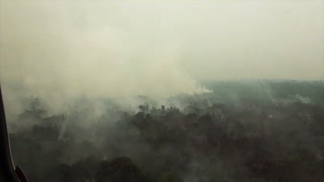Malaysia closes more than 1,000 schools nationwide and air quality worsens in Singapore days before the citys Formula One race, as toxic haze from Indonesian forest fires engulfs the region u.afp.com/JbTv