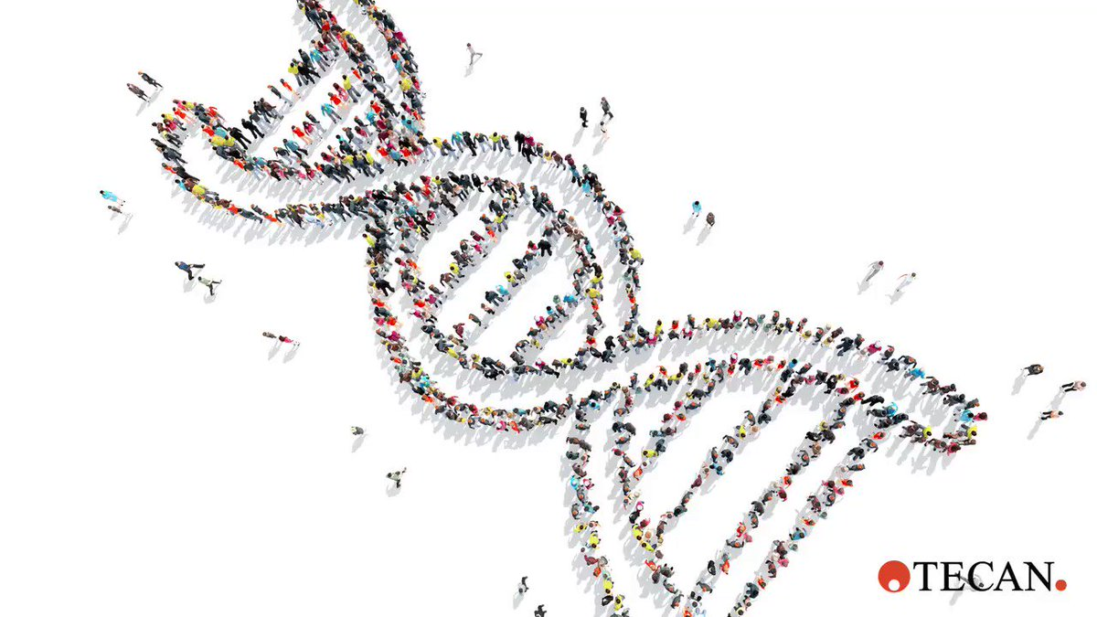Want to know more about genetic testing? In this guide we address some of the most frequently asked questions: http://bit.ly/2QbhNrp  #genomics #genetictesting #ngs