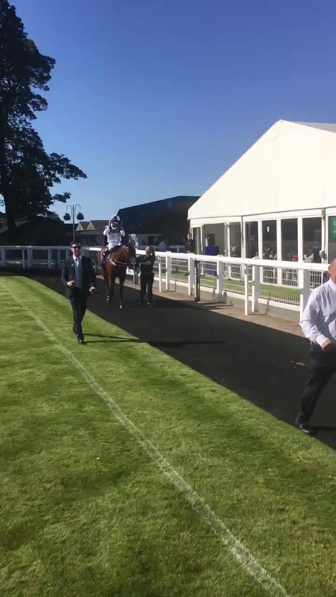 Congratulations to @BearstoneStud, who bred and own GRAVITY FORCE, winner of the @AMCofHE Dundee/British Stallion Studs @BritishEBF Novice Stakes @ayrracecourse #ShadwellDay