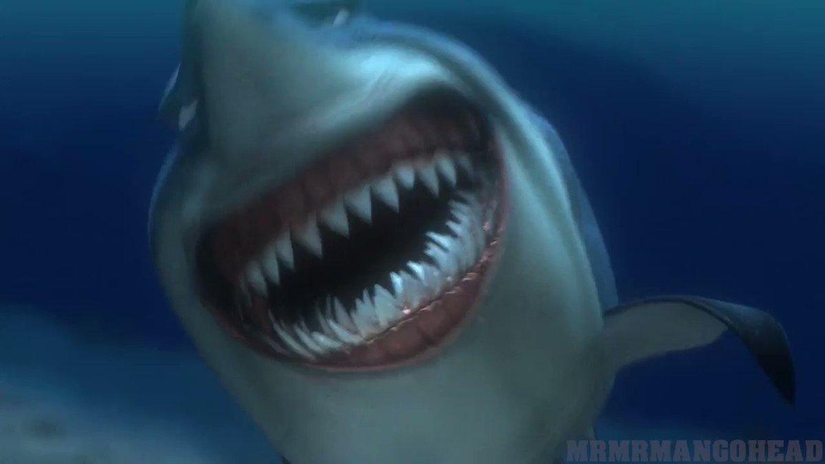 самым смешные гифки с акулами услуги, информация