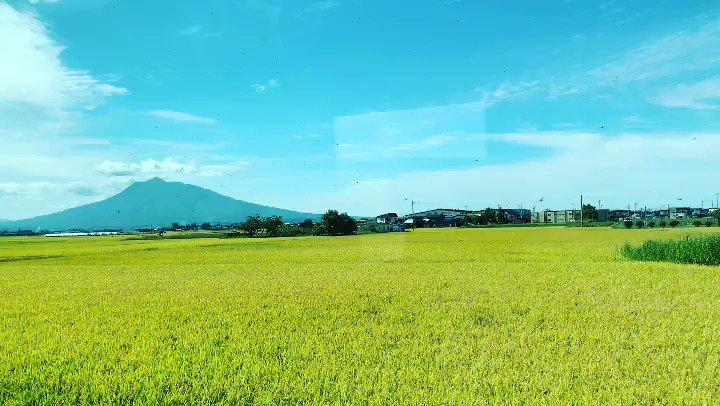 三連休は父のお墓まいりに秋田へ稲刈りが始まり、外の空気も稲藁の香り?広がる田んぼと山と空と、ああ帰ってきたなあと癒される✨
