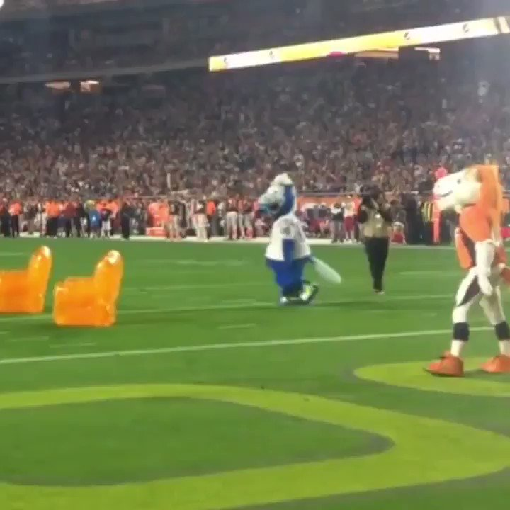 The Colts mascot is a legend 🐐💯 @blue