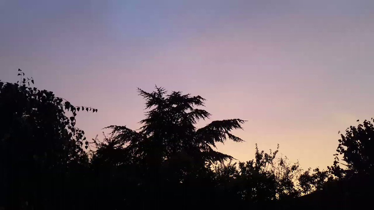 .#goodnight #mygarden To me, you are Perfect 😊💗 Share your #garden and the best will be RT 🌅💖📷 is #art Which Country are You? 🇳🇬🇳🇿🇳🇺🇳🇷🇳🇴🇳🇱🇳🇮🇲🇽🇲🇾🇳🇦🇲🇷🇲🇴🇱🇰🇱🇷🇱🇸🇱🇹🇱🇮🇯🇵🇯🇴🇰🇳🇰🇵🇰🇷🇰🇪🇰🇭🇰🇼🇰🇲🇱🇦🇯🇲🇮🇹🇮🇱🇮🇳🇮🇪🇭🇺🇪🇸🇫🇷🇪🇹🇩🇿🇪🇨🇬🇭🇪🇬🇪🇪🇩🇪🇨🇿🇨🇱🇨🇮🇧🇩🇧🇷🇨🇦🇧🇼🇧🇬🇧🇴🇧🇪🇦🇷🇦🇼🇸🇧🇵🇹🇸🇦🇵🇼🇵🇰🇵🇭🇸🇸🇸🇪🇸🇬🇸🇮🇸🇰🇺🇬🇺🇸🇺🇾🇿🇼🏴🏴