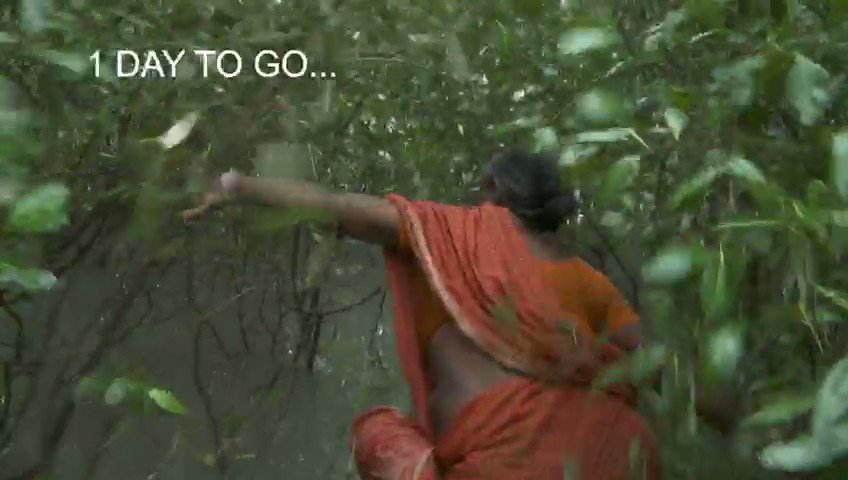 Tomorrow at 9PM on @AnimalPlanet. You will see what it takes to live and work in #Sunderbans. Heroes of the #wild frontiers.