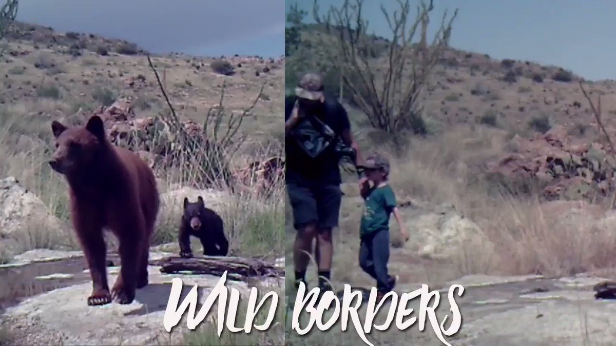 """The @CenterForBioDiv's Russ McSpadden compiled this exceptional 60-second video to complement his """"Wild Borders"""" article in our new Autumn 2019 issue. Jaguar sighting?!?:"""