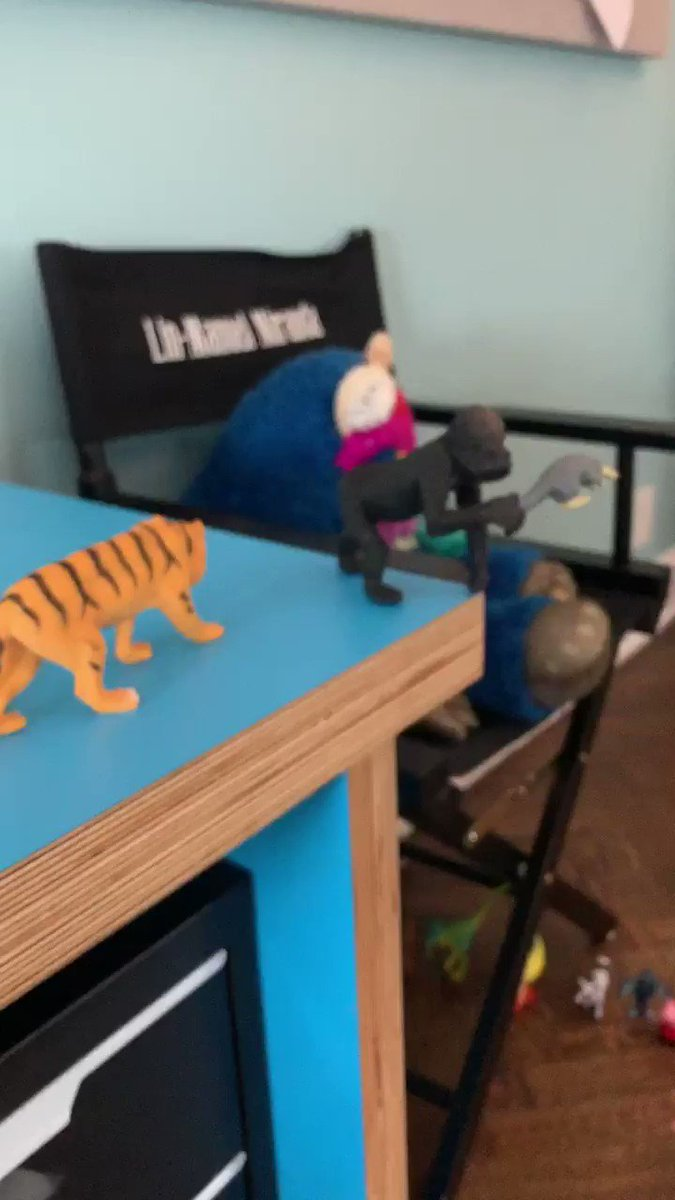 I was answering emails at my desk and when I turned around, a gorilla was holding an armadillo. My son had Pride Rocked my office. Again.
